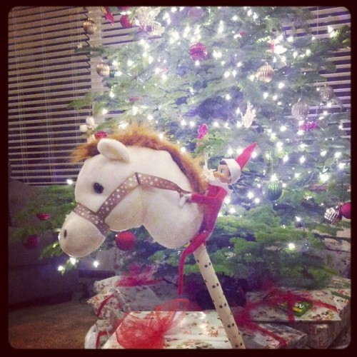 Elf riding stick horse, secured with little rubber bands, horse propped up by presents