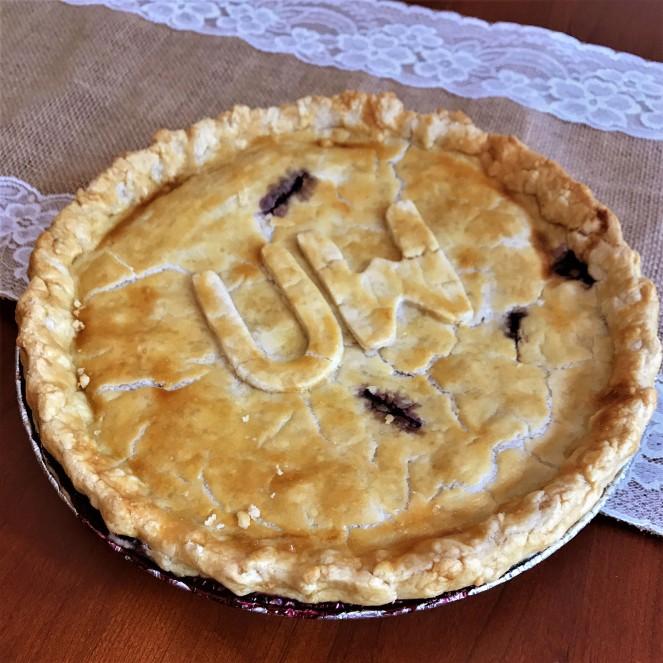 blueberry pie (3)